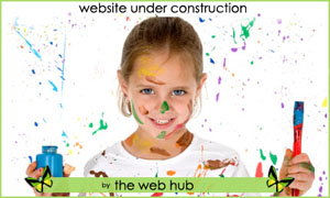 The Web Hub : The process involved in getting a website